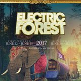 Dillon Francis LIVE @ Electric Forest Weekend 1 06/23/17