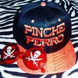 Pinche Perro - Cumbia & Salsa Vinyl Session @ Strike Spa Roma Part.2