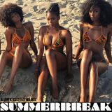 SummerBreak [ A Soul Lounge Edition ]