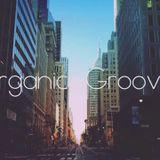 David Rivero - Organic Grooves 2016