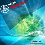 Peter Hammerman - The Mix VI (Waiting for summer)