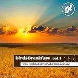 BirdsBreakfast vol. I - Ignacio Glera DJ
