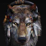 DJ Wolf Tramm ja Buss mix 2017