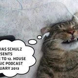 ONE TO 12. HOUSE MUSIC PODCAST JANUARY 2013 - MIXED BY TOBIAS SCHULZ