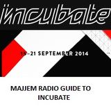 Majjem Radio Guide To The Incubate Festival 2014 (Part 1: Monday, Tuesday And Wednesday)