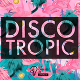 Discotropic mix by Jankev (august 16 - mix 02)