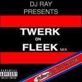 Twerk on Fleek Dj Ray Mix