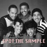 Spot The Sample: Episode 29
