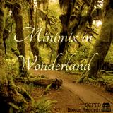 DCFTD minimix in Wonderland