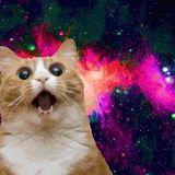 Meow Mix Vol 1