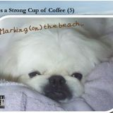Life is a Strong Cup of Coffee (5) - Marking (on) the Beach