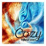2017-05-28 ::: Cozy - Hybrid Love