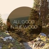 All good in the wood (06.2013)