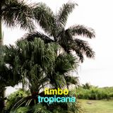 LIMBO TROPICANA