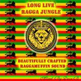 Long Live Ragga Jungle - Mixed By Dave B