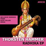 Thorsten Hammer - Radhika (Alex Celler Shifted Dub) / Ametist Records