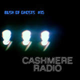 Bush of Ghosts #15 with David Tinning