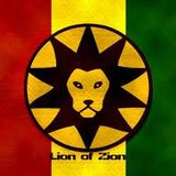 Lion Fyah Born Party (KingReggaeMix)