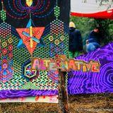 Manda - Wicked Forest (DJ set) - 2014
