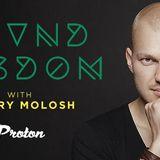 Dmitry Molosh - Sound Wisdom 025 (June 2017) [Proton Radio]