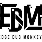 IDOL DJ MIX vol.04 [Edge Dub Monkeyz only MIX]