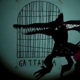 GATTABUIA - router 14 marzo 2017