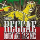 dj Biloo Fly - Tribute to Reggae Drum & Bass Mix
