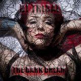 DJ Tribal D&B Mix -THE DARK DREAM- 04-2012