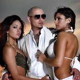 Pitbull & Friends by Dj JC