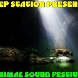 DEEP STATION RADISHOW-MINIMAL SOUND FESTIVAL-JUNGLE I