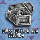 Guess You Know Now Vol. 04