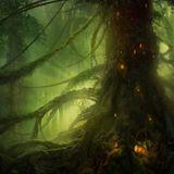 2 Thousand 2 Elves (Part 3) - The Psybient Side