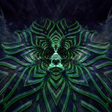 Psydive Crystal Transmission (Forest/Darkpsy)