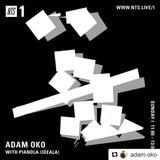 Adam Oko & Pianola - 15th April 2018