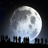 Ananta - El Bosque Lunar