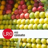 Life Force Radio Observatory #32 With Cossato