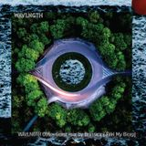 WAVLNGTH 005 - Guest Mix by Brassica [30-06-2017]
