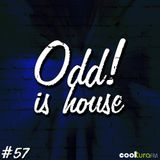 ODD! is House #57 + DARIO DAMERINI 13/11/15