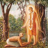 Rendición plena al maestro espiritual