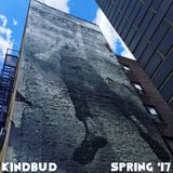 KINDBUD Spring '17 (Live from NYC-BOS Acela)