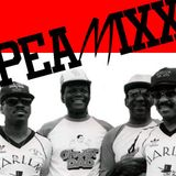 PEAMIXX 10 (Deep Underground Hip Hop And Rap On Fiyah - Mixed By PEABIRD, Oct, 2015)