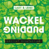 Laut & Leise Mix 03 presents Nick Fisher