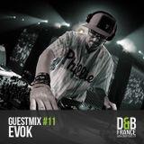 Guest Mix DnbFrance #11 - Evok