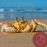 TROPICAL GROOVES vol.1