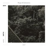 MXTP0007 - Bosques de Latinoamerica