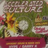 DJ HYPE - Accelerated Culture vol 25 Global Gathering 2005