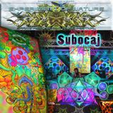 Subocaj - Experiment of Nature Reflections 2012