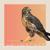 Chromacast 15 - lotophage