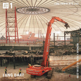 Lung Dart - 19th August 2019
