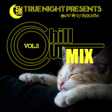 true night presents vol.2 CHILL OUT MIX mixed by DJ TRICKSTER